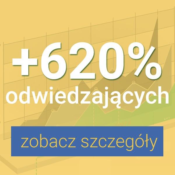 Pozycjonowanie e-commerce wyniki
